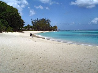 Paradise on the beach in Barbados. Just one of many beautiful sandy beaches the surround the island. Some are busy and full oflife and some are peaceful retreats.